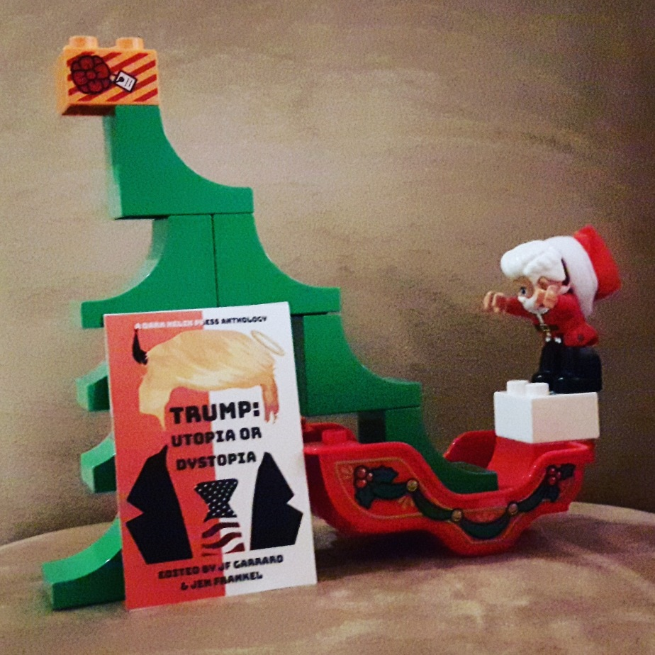 Trump book published on Christmas!